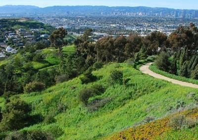 Defending California's Environmental Protection Laws