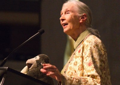 Promoting Jane Goodall's Leakey Prize